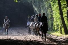 a_francia_chantillyban_csodalatos_kornyezetben_es_palyakon_dolgozhatnak_a_lovasok